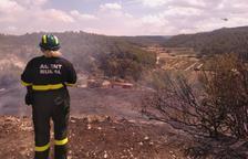 Tres incendios calcinan más de 10 hectáreas en Ponent