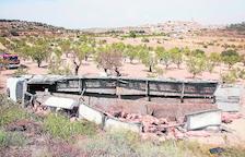 Un camión con cerdos cae por un terraplén en Maldà