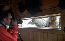 Un dels punts d'observació de fauna a Boumort.