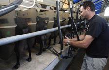 El sector de la leche de cabra impulsa un sello de calidad