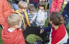 Nens olivaires a Preixana