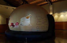 La cúpula Gustum pot donar cabuda a un màxim de trenta alumnes.