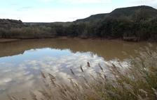 Castelldans veta el consumo de agua del grifo por turbidez