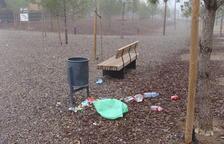 Incivisme al Bosc Urbà de Nova Balàfia