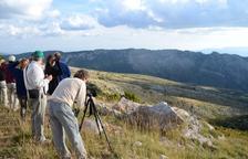 Pla per potenciar el turisme d'albirament de fauna a Boumort