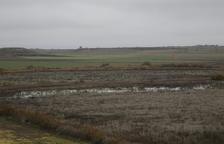 La llacuna de la Unilla d'Almenar reapareix per les pluges d'enguany