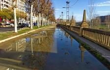 Toll etern a l'avinguda de Madrid