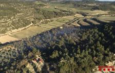 Denunciado por una quema agrícola en Maldà