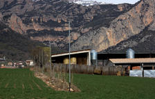 Detenen un veí de Seròs que va robar 15 corders a un ramader del poble