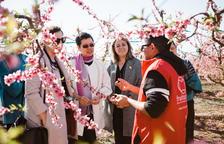 Aitona y Tailandia refuerzan lazos para promover el turismo de la flor