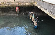 Imagen del rescate de los peces del Garona a su paso por Bossòst.