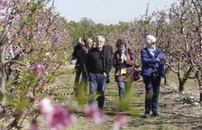 Más de un centenar de personas en las rutas por los frutales floridos en Alcarràs