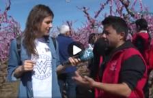 Ara Lleida Tour descobreix el Fruiturisme