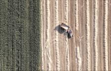 Homenaje a la agricultura