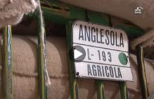 VÍDEO. Ara Lleida Tour als Tres Tombs d'Anglesola
