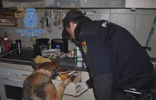Desarticulan una organización de narcotraficantes en Reus, Zaragoza y Huesca