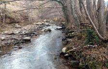 La CUP va denunciar al gener que les elèctriques havien deixat gairebé sense cabal el riu Flamisell.