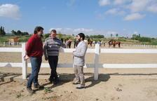 El segon EquiMollerussa reunirà uns 200 cavalls de setanta ramaderies