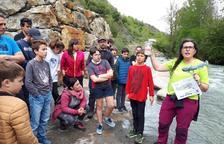 Liberan a cien cavilats en el Garona a su paso por Es Bòrdes