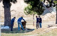 Confirmen que el cadàver trobat a El Prat és el de Janet Jumillas