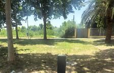 Fonts amb aixetes per a gossos en parcs de Fraga