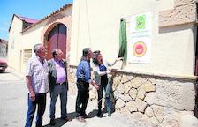 Los olivos de Lleida necesitan lluvias ya para garantizar buena cosecha