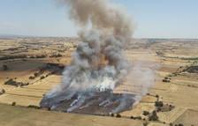 Alarma por dos nuevos fuegos, que arrasan 70 hectáreas en la Segarra