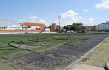 Renoven la gespa del camp de futbol de Mollerussa