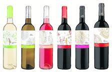 Seis de los ocho vinos que han sido reconocidos.