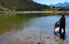 Mejora ambiental del lago Closell del Parc Natural