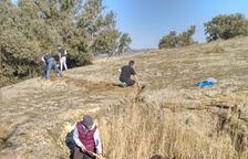 La naturaleza vuelve a Balaguer