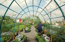 'Per les teulades' de Bangkok