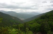 Com afecta l'abandonament de les pastures al Pirineu al canvi climàtic?