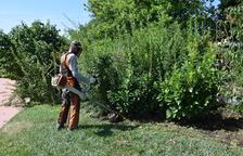 Persones en risc d'exclusió social milloraran zones verdes de la Seu