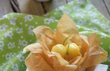 Flors de gelat de mandarina i mango