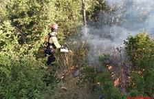 Arden 1,5 hectáreas en Alfarràs