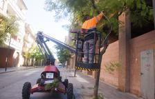 Los comercios de Tàrrega celebran mañana la Nit Boja, su fiesta de otoño