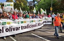 """Els oliverers reclamen """"mesures urgents"""""""