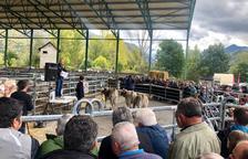 Unas 1.500 personas visitan la feria ganadera de Esterri d'Àneu