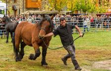 La fira ramadera d'Esterri d'Àneu tanca amb uns 3.500 visitants