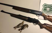 Denunciat per caçar a les Garrigues sense llicència