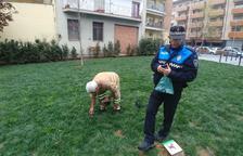 La Seu rebaja multas a los dueños de perros que no recojan los excrementos
