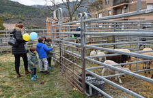 La mostra ramadera d'Organyà compleix 25 anys