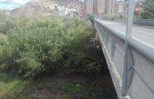 La Chunta exigeix netejar el curs del riu Cinca