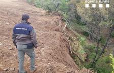 Denunciado por una tala ilegal de árboles en el Pallars Jussà