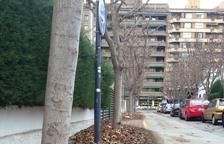 Falta de neteja a Lleida