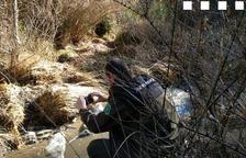 Un agente tomando muestras en el río Flamisell.