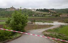 El Corb es desborda i nega pistes i horts a l'Urgell