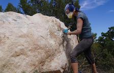 L'escultora Marta Pruna ha començat a treballar en l'obra per a l'Oliverart 2020 de la Granadella.