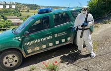 Rescatan una serpiente en una casa 'aislada' por Covid en Lleida